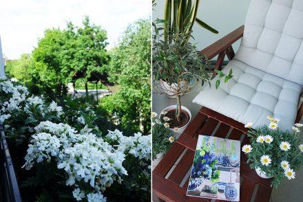 ekulele-step-into-spring-tag-home-fruehling-balkon-beauty-1