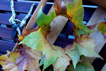 autumn, diy, ekulele, mamablog, krone, kleinkind herbst