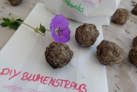 DIY Blumenstrauß aus Samenbomben