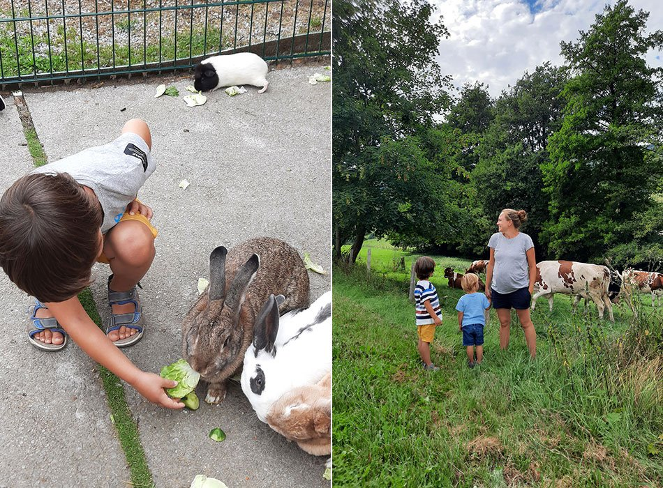 Familienurlaub Sauerland